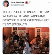 Memes, Twitter, and Alcohol: Josie Brechner  @visagermusic  THERE'S A DOG SITTING AT THIS BAR  WEARING A HAT AND EATING AND  EVERYONE IS JUST PRETENDING LIKE  ITS NO BIG DEAL???  ries or  side wihot dog  Fries or Tots  ALCOHOL  Hot Dog  ALCOHOL  HOT  Hot  15  HOT D  《旨 🚨ALERT ALERT🚨 @thebasicbitchlife look at this (@visagermusic on Twitter)