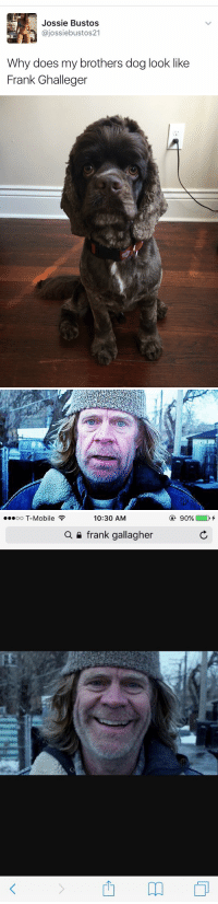 T-Mobile, Mobile, and Girl Memes: Jossie Bustos  ajossiebustos21  Why does my brothers dog look like  Frank Ghalleger   10:30 AM  ooooo T-Mobile  a frank gallagher  m  90% I'm crying 😂