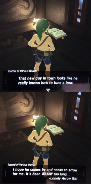 Nintendo, Tumblr, and Arrow: Journal of Various Worries  That new guy in town looks like he  really knows how to tune a bow.   Journal of Various Worries  I hope he comes by and nocks an arrow  for me. It's been WAAAY too long.  -Lonely Arrow Girl nedzuku:  OKAY NINTENDO