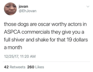 Oscar Worthy: jovan  @EhJovan  those dogs are oscar worthy actors in  ASPCA commercials they give you a  full shiver and shake for that 19 dollars  a month  12/25/17, 11:20 AM  42 Retweets 260 Likes