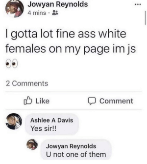 me_irl: Jowyan Reynolds  4 mins  I gotta lot fine ass white  females on my page im js  2 Comments  Like  OComment  Ashlee A Davis  Yes sir!!  Jowyan Reynolds  U not one of them me_irl