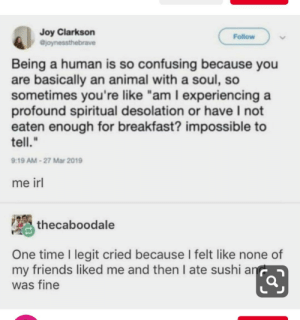 "meirl: Joy Clarkson  ejoynessthebrave  Follow  Being a human is so confusing because you  are basically an animal with a soul, so  sometimes you're like ""am I experiencing a  profound spiritual desolation or have I not  eaten enough for breakfast? impossible to  tell.""  9:19 AM-27 Mar 2019  me irl  thecaboodale  One time I legit cried because I felt like none of  my friends liked me and then I ate sushi an  was fine meirl"