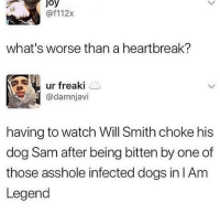 Dogs, Lol, and Memes: Joy  @f112x  16  what's worse than a heartbreak?  ur freaki  @damnjavi  having to watch Will Smith choke his  dog Sam after being bitten by one of  those asshole infected dogs in IAm  Legend Lol