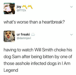 Dogs, Will Smith, and Watch: joy  @f112x  what's worse than a heartbreak?  ur freaki  @damnjavi  having to watch Will Smith choke his  dog Sam after being bitten by one of  those asshole infected dogs in lAm  Legend This was hard to watch