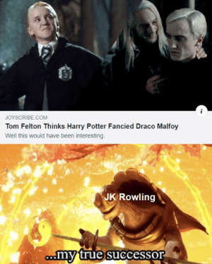25+ Best Draco Malfoy Memes | Their Lives Memes, Undere