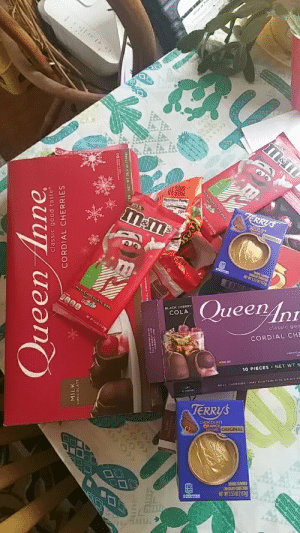 My ole lady and I are holiday vultures. We don't really celebrate, but we swoop in at the end and scavenge the clearance aisle.: Jrge de T  MILK  JERRYS  ORIGINAL  CHOCOLARE CO  NET WT 5.53 0 (157)  MILK CHOCOLATE BAR  Queen Anr  MINO  BLACK CHERRY  COLA  NET WT 402 (134g  classic goa  CORDIAL CHE  ARTIFICIA  10 PIECES . NET WT 6  REAL CHERRIES-MAY CONTAIN PITS OR PIT FA  to induge  TERRYS  CHOCOLATE  ORANGE  ORIGINAL  ORANGE FLAVORED  CHOCOLATE CONFECION  NET WIT S.53 02 (157g)  160  Queen Anne  classic good taste  CORDIAL CHERRIES  ULK CHOCOLATE BAR My ole lady and I are holiday vultures. We don't really celebrate, but we swoop in at the end and scavenge the clearance aisle.