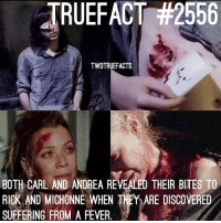 Memes, Wow, and Suffering: JRUEFACT #2556  TWDTRUEFACTS  BOTH CARL AND ANDREA REVEALED THEIR BITES TO  RICK AND MICHONNE WHEN THEY ARE DISCOVERED  SUFFERING FROM A FEVER Wow... TheWalkingDead TWD WalkingDead