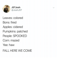 hello fall, i've missed you 🎃🖤🦇: JSTJosh  @JoshJST  Leaves: colored  Bons: fired  Apples: cidered  Pumpkins: patched  People: SPOOKED  Corn: mazed  Yee: haw  FALL HERE WE COME hello fall, i've missed you 🎃🖤🦇