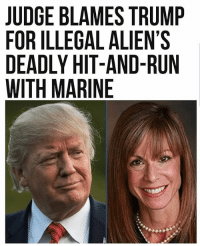 A Maryland judge blamed President Donald Trump for the fear that caused an illegal alien to flee the scene of a collision that killed a 21-year-old U.S. Marine. The illegal alien fled the scene after he crashed his BMW 335i into the Marine's motorcycle.. . . Conservative America SupportOurTroops American Gun Constitution Politics TrumpTrain President Jobs Capitalism Military MikePence TeaParty Republican Mattis TrumpPence Guns AmericaFirst USA Political DonaldTrump Freedom Liberty Veteran Patriot Prolife Government PresidentTrump Partners @conservative_panda @reasonoveremotion @conservative.american @too_savage_for_democrats @conservative.nation1776 @keepamerica.usa -------------------- Contact me ●Email- RaisedRightAlwaysRight@gmail.com ●KIK- @Raised_Right_ ●Send me letters! Raised Right, 5753 Hwy 85 North, 2486 Crestview, Fl 32536: JUDGE BLAMES TRUMP  FOR ILLEGAL ALIEN'S  DEADLY HIT-AND-RUN  WITH MARINE A Maryland judge blamed President Donald Trump for the fear that caused an illegal alien to flee the scene of a collision that killed a 21-year-old U.S. Marine. The illegal alien fled the scene after he crashed his BMW 335i into the Marine's motorcycle.. . . Conservative America SupportOurTroops American Gun Constitution Politics TrumpTrain President Jobs Capitalism Military MikePence TeaParty Republican Mattis TrumpPence Guns AmericaFirst USA Political DonaldTrump Freedom Liberty Veteran Patriot Prolife Government PresidentTrump Partners @conservative_panda @reasonoveremotion @conservative.american @too_savage_for_democrats @conservative.nation1776 @keepamerica.usa -------------------- Contact me ●Email- RaisedRightAlwaysRight@gmail.com ●KIK- @Raised_Right_ ●Send me letters! Raised Right, 5753 Hwy 85 North, 2486 Crestview, Fl 32536