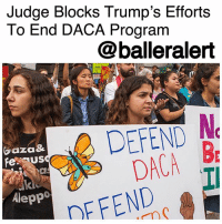"Children, cnn.com, and Memes: Judge Blocks Trump's Efforts  To End DACA Program  @balleralert  EFEND N  DACA B  DFFENDI  aza&  feus  Aleppo Judge Blocks Trump's Efforts To End DACA Program - blogged by @MsJennyb ⠀⠀⠀⠀⠀⠀⠀ Just four months after the Trump Administration moved to end the program that protected young undocumented immigrants who came to the US illegally as children from deportation, a judge has blocked the efforts. ⠀⠀⠀⠀⠀⠀⠀ ⠀⠀⠀⠀⠀⠀⠀ According to CNN, Judge William Alsup ruled to temporary stop the rollback of the DACA program on Tuesday, saying the decision to end the program was made on unreasonable grounds or without any proper consideration of circumstances. ⠀⠀⠀⠀⠀⠀⠀ ⠀⠀⠀⠀⠀⠀⠀ In the 49-page ruling, the federal judge also said the administration must resume receiving renewal applications for the program. However, the administration is not required to process new applications. ⠀⠀⠀⠀⠀⠀⠀ ⠀⠀⠀⠀⠀⠀⠀ In response, the Administration condemned the Alsup's ruling with the White House press secretary calling it ""outrageous."" Meanwhile, Trump took his frustrations to Twitter, tweeting, ""It just shows everyone how broken and unfair our Court System is when the opposing side in a case (such as DACA) always runs to the 9th Circuit and almost always wins before being reversed by higher courts."" However, others believe this is a huge step in the right direction."