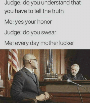 Everyday: Judge: do you understand that  you have to tell the truth  Me: yes your honor  Judge: do you swear  Me: every day motherfucker Everyday