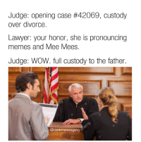 Lawyer: Judge: opening case #42069, custody  over divorce.  Lawyer: your honor, she is pronouncing  memes and Mee Mees.  Judge: WOW. full custody to the father.  @dankmemesgang