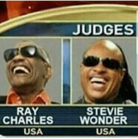 pacman got robbed: JUDGES  RAY  CHARLES  STEVIE  WONDER  USA  USA pacman got robbed