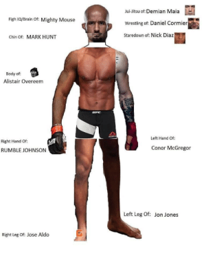 Conor McGregor, Demian Maia, and Jose Aldo: Jui-Jitsu of: Demian Maia  Wrestling of: Daniel Cormier  Staredown of: Nick Diaz  Figh 1Q/Brain Of: Mighty Mouse  Chin of: MARK HUNT  Body of  Alistair Overeem  Left Hand Of:  Right Hand Of  RUMBLE JOHNSON  Conor McGregor  Left Leg Of: Jon Jones  Right Leg of Jose Aldo The perfect fighter