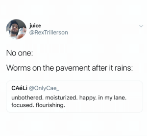 What a visual (credit and consent: @RexTrillerson on Twitter): juice  RexTrillerson  No one:  Worms on the pavement after it rains:  CAéLi @OnlyCae_  unbothered. moisturized. happy. in my lane.  focused. flourishing What a visual (credit and consent: @RexTrillerson on Twitter)