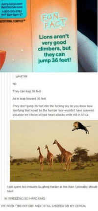 Africa, Facts, and Fucking: Juicy Juice.com  Nestle USA com  1-800-510-6763  MF 8am-8pm ET  FACT  UTRITIONAL COMPASS  Lions aren't  very good  climbers, but  they can  jump 36 feet!  WHAT  They can leap 36 feet  As in leap forward 36 feet  They don't jump 36 feet into the fucking sky do you know how  terrifying that would be the human race wouldn't have survived  because we'd have all had heart attacks while still in Africa  I just spent two minutes laughing harder at this than I probably should  have.  IM WHEEZING SO HARD OMG  IVE SEEN THIS BEFORE AND ISTILL CHOKED ON MY CEREAL