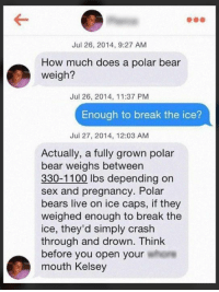 Dammit Kelsey: Jul 26, 2014, 9:27 AM  How much does a polar bear  weigh?  Jul 26, 2014, 11:37 PM  Enough to break the ice?  Jul 27, 2014, 12:03 AM  Actually, a fully grown polar  bear weighs between  330-1100 lbs depending on  sex and pregnancy. Polar  bears live on ice caps, if they  weighed enough to break the  ice, they'd simply crash  through and drown. Think  before you open your  mouth Kelsey Dammit Kelsey