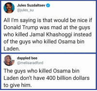 Priorities!: Jules Suzdaltsev  @jules_su  All I'm saying is that would be nice if  Donald Trump was mad at the guys  who killed Jamal Khashoggi instead  of the guys who killed Osama bin  Laden.  dappled bee  @melisaradford  The guys who killed Osama bin  Laden don't have 400 billion dollars  to give him Priorities!