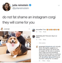 "Bitch, Corgi, and Instagram: julia reinstein <  @juliareinstein  do not fat shame an instagram corgi  they will come for vou  pcacorgis  2d 1 like Reply  stephonie erin That poor dog is so  obese.  1d 1 like Reply  Hide replies  pcacorgis @stephonie_erin Actually  bitch, the healthy weight for an  adult male Corgi is 25-30 lbs and  he weighs 26. Go troll on someone  else's page and find something  better to do than hate on a precious  dog that looks better than you ever  will. @moffittier @brambi76 look at  this bitch calling Pax ""so obese.""  8h 7 likes Reply <p>via <a href=""https://twitter.com/juliareinstein"" target=""_blank"">@juliareinstein</a></p>"
