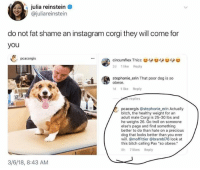 "Bitch, Corgi, and Funny: julia reinstein  @juliareinstein  do not fat shame an instagram corgi they will come for  you  pcacorgis  2d 1 like Reply  stephonie erin That poor dog is so  obese.  d 1 like Reply  飛:  e replies  pcacorgis @stephonie erin Actually  bitch, the healthy weight for an  adult male Corgi is 25-30 lbs and  he weighs 26. Go troll on someone  else's page and find something  better to do than hate on a precious  dog that looks better than you ever  will.@moffittier @brambi76 look at  this bitch calling Pax ""so obese.""  8h 7 likes Reply  3/6/18, 8:43 AM Never fuck with obesity of a Corgi."
