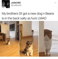 I am Sad i keep trying to mod stardew valley like i want to change how my cat looks like but it's not working: Julie240  @Juliie 240  My brothers Gf got a new dog n Beans  is in the back salty as fuck LMAO I am Sad i keep trying to mod stardew valley like i want to change how my cat looks like but it's not working
