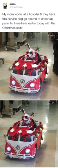 Christmas, Hospital, and Spirit: juliee.  @jewelsssm  My mom works at a hospital & they have  this service dog go around to cheer upp  patients, Here he is earlier today with the  Christmas spirit   VW-TYP2   VW-TYP2