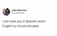 Memes, Roast, and Spanish: Julio Martinez  @JulioPosts  Dp  I can roast you in Spanish and in  English try me pinché ojete 😂😂