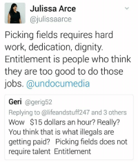 Ali, Memes, and Wow: Julissa Arce  ajulissaarce  Picking fields requires hard  work, dedication, dignity  Entitlement is people who think  they are too good to do those  jobs. @undocumedia  Geri  eri  Replying to ali feandstuff247 and 3 others  Wow $15 dollars an hour? Really?  You think that is what illegals are  getting paid? Picking fields does not  require talent Entitlement The ignorance is real