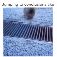"""Bitch, Dogs, and Gemini: Jumping to conclusions like  My Therapistsays """"She's a Gemini so she's def a psycho bitch"""" @mybestiesays (dog= @borjefromlauttasaari)"""