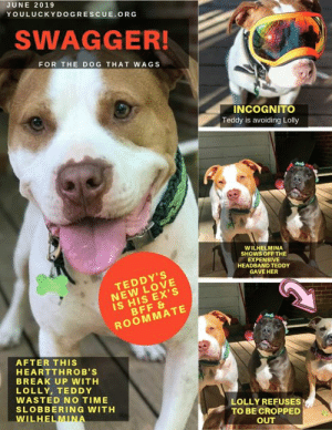 JUNE 2019 YOULUCKYDOGRESCUEORG SWAGGER! FOR THE DOG THAT WAGS