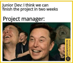 2 weeks huh.: Junior Dev: I think we can  finish the project in two weeks  Project manager:  @programmer.me  The Future Programmer 2 weeks huh.