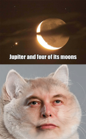 Jupiter, Dank Memes, and Lox: Jupiter and four of its moons Heavy LOX