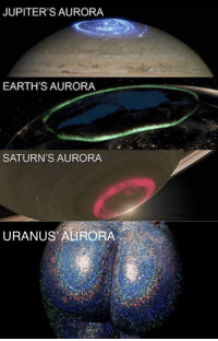 Would you like to learn more? via /r/memes http://bit.ly/2TRfcQL: JUPITER'S AURORA  EARTH'S AURORA  SATURN'S AURORA  URANUS AURORA Would you like to learn more? via /r/memes http://bit.ly/2TRfcQL