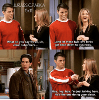 Memes, 🤖, and Sisters: JURASSIC PARK A  5x15  What do you say we all, u  clear out of here...  ...and let these two love birds  get back down to business  Hey, hey, hey. I'm just talking here.  He's the one doing your sister ✨😂 - { joeytribbiani rachelgreen rossgeller friendstvshow}