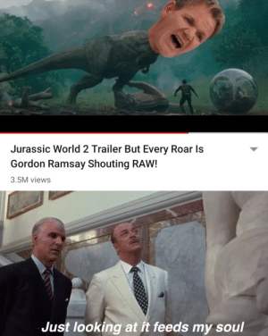 Dank, Gordon Ramsay, and Jurassic World: Jurassic World 2 Trailer But Every Roar Is  Gordon Ramsay Shouting RAW!  3.5M views  Just looking at it feeds my soul Feeds my soul indeed by UncreativeFilth MORE MEMES