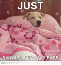 Every morning, before school... Oh it's Monday again...