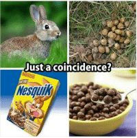 Memes, 🤖, and Nestle: Just a coincidence?  Nestle  NEW  18RE hmmm seemslegit ohshit iknowipostedthisbefore yearsago hahahaha