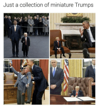 BEST thing on interwebs RN: Just a collection of miniature Trumps BEST thing on interwebs RN