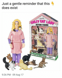 Cats, Crazy, and Memes: Just a gentle reminder that this  does exist  CRAZY CAT LAD  ACTION FIGURE  COMES WITH 6 CATS!  WARNING:  Parts  9:26 PM 09 Aug 17 I need this.   Follow @aranjevi for more!