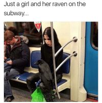 Advanced goth level achieved 😂💀 @worldstar WSHH: Just a girl and her raven on the  subway. Advanced goth level achieved 😂💀 @worldstar WSHH