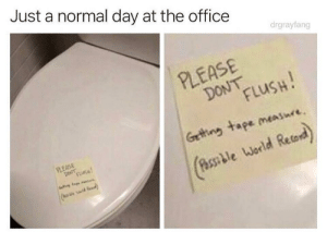 Our office is so competitive: Just a normal day at the office  drgrayfang  PLEASE  DoN LusH  Getting tape messure  World Retord  PLEASE  (o Our office is so competitive