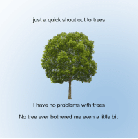 no problems: just a quick shout out to trees  I have no problems with trees  No tree ever bothered me even a little bit