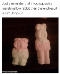 @madeinpoortaste has the freshest memes 😂😂: Just a reminder that if you squash a  marshmallow rabbit then the end result  is Kim Jong-un  @madeinpoortaste @madeinpoortaste has the freshest memes 😂😂