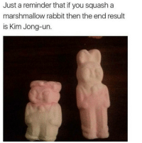 OhDamn savage Ha ha. I'm weak flatlined dead pettypost nochill teamnoharmdone noharmdone: Just a reminder that if you squash a  marshmallow rabbit then the end result  is Kim Jong-un OhDamn savage Ha ha. I'm weak flatlined dead pettypost nochill teamnoharmdone noharmdone