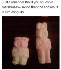 Uncanny 😂😂😂😂😂: Just a reminder that if you squash a  marshmallow rabbit then the end result  is Kim Jong-un Uncanny 😂😂😂😂😂