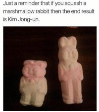 • Follow my other accounts @quornhubv2 and @irepostshittymemes •: Just a reminder that if you squash a  marshmallow rabbit then the end result  is Kim Jong-un. • Follow my other accounts @quornhubv2 and @irepostshittymemes •