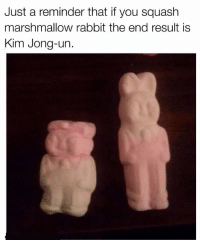 Squashing: Just a reminder that if you squash  marshmallow rabbit the end result is  Kim Jong-un.