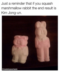 This is important: Just a reminder that if you squash  marshmallow rabbit the end result is  Kim Jong-un.  @madeinpoortaste This is important