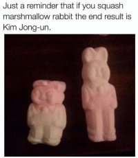 Spooky facts 4u: Just a reminder that if you squash  marshmallow rabbit the end result is  Kim Jong-un. Spooky facts 4u
