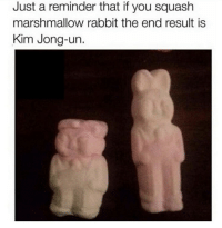 Kim Jong-Un, Rabbit, and Squash: Just a reminder that if you squash  marshmallow rabbit the end result is  Kim Jong-un.